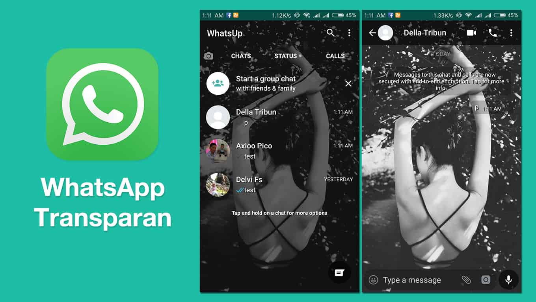 aplikasi Whatsapp transparan